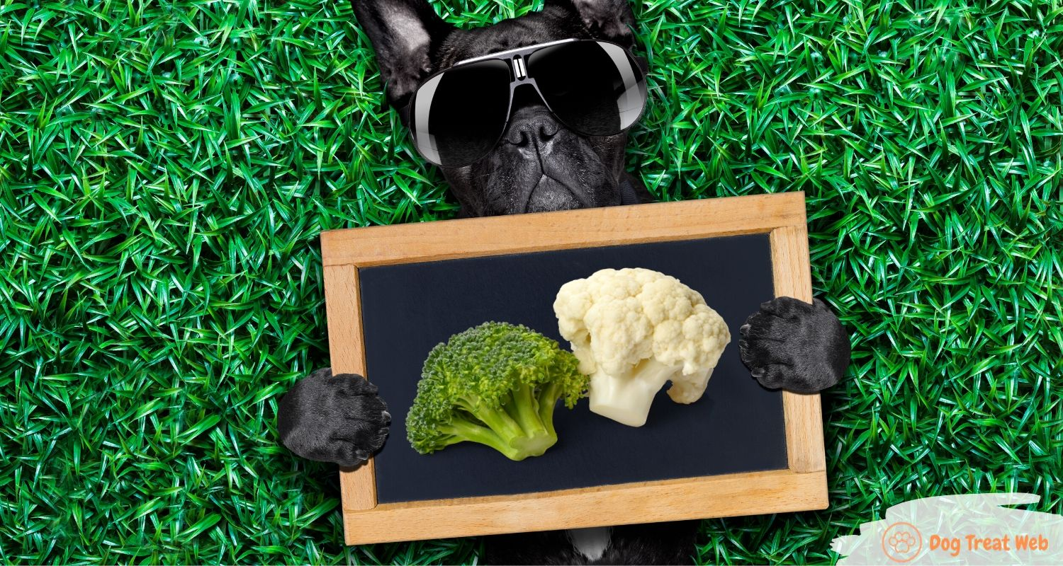 can dogs eat broccoli and cauliflower